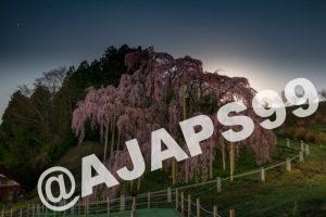 今年も福島県三春周辺へ